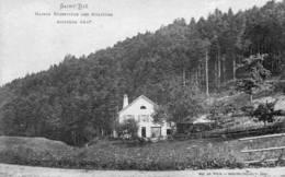 CPA - SAINT-DIE (88) - Aspect De La Maison Forestière Des Molières Au Début Du Siècle - Saint Die