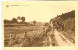 HOUFFALIZE   --  Route De Taverneux - Houffalize