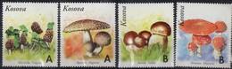 KOSOVO - Morchella Vulgaris - Agaricus Augustus - Boletus Edulis - Amanita Muscaria