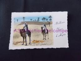 CPSM Algerie 01548 Au Désert 1960 Meilleurs Voeux D Algérie