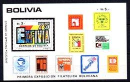 Hb-38 Bolivia - Bolivia