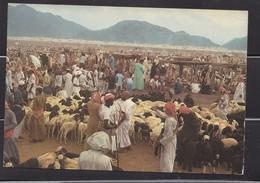 Saudi Arabi, Old  Post Card  Showing  Pilgrimage At Muna  Site  In Hajj Where They Spent Three Day .rare Original, Photo