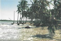 Bahia - Santa Cruz Cabralia - Santo Antonio - Praia Do Paraiso Escondido - Salvador De Bahia