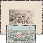 Centrafrique 1965 Y&T 44. Épreuve-photo, Timbre Définitif Modifié. Bœufs Comme Animaux De Trait Dans L'agriculture