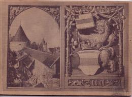 Schönes Altes Album Von ZUG / Schweiz  - Viele Bilder Und Reklame - Ca. 1910 - ZG Zug