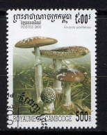 CAMBODGE - 1726° - AMANITA PANTHERINA - Cambodge