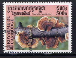 CAMBODGE - 1802° - TRAMETES VERSICOLOR - Cambodge