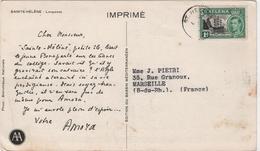 Carte Publicitaire AMORA Sainte Helene Longwood Marcophilie - Saint Helena Island