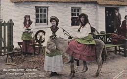 FRANCO BRITISH 1908. BALLYMACLINTON COLLEENS. DONKEY - Exhibitions