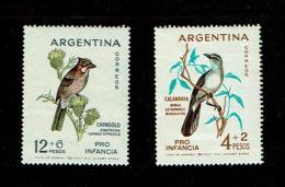 Argentina 1962 Sc # B40 / B41  MNH **  Birds - Oiseaux