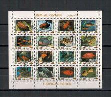 Umm Al-Kaiwain, Tropische Fische (II) | Fishes MiNr. 1482 - 1497, 1972 Used