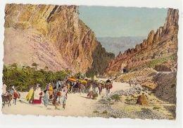 AFRICA - ALGERIA -  LES GORGES D'EL KANTARA - 1950s/60s ( 893 ) - Cartes Postales