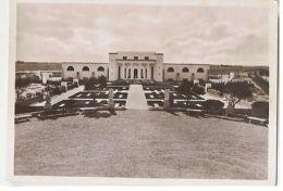 AFRICA - LIBYA - SABRATHA - THE MUSEUM - 1938  ( 902 ) - Cartes Postales
