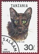 1992 - Havana Brown (Felis Silvestris Catus) -  Yt:TZ 1350 - Used (u)
