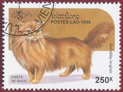 1995 - Red Tabby Point Colorpoint Longhair (Felis Silvestris Catus) - Yt:LA 1188 - Used (u)
