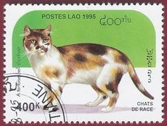 1995 - Tortoiseshell White Shorthair (Felis Silvestris Catus) - Yt:LA 1189 - Used (u)
