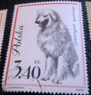 Poland 1963 Dog Owczarek Podhalanski 3.40zl - Used