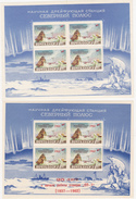 RUSSIE  BF 28  (MNH**) ET BF 31 (MH** AVEC POINTS JAUNES)  EXPEDITIONS POLAIRES