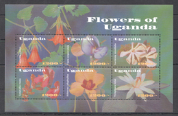 A90 UGANDA FLORA NATURE & PLANTS FLOWERS OF UGANDA 1KB MNH