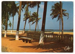 Togo--LOME--Al'ombre Des Cocotiers.cpsm 15 X 10  N° 9  éd  Photo Amuzu......pas Très Courante....à Saisir - Togo