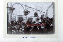 Les Serres Intérieur - Exposition Universelle Paris 1900 - Foto's
