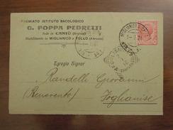 PREMIATO ISTITUTO BACOLOGICO  G. FOPPA PEDRETTI Sede In CANTU' (Brianza) Stabilimento In MIGLIANICO E TOLLO  Anno 1921 - Pubblicitari