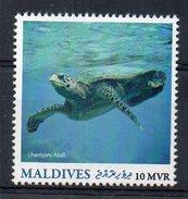 MALDIVES - TORTUE - TURTLE - LHAVIYANI ATOLL - 2016 -