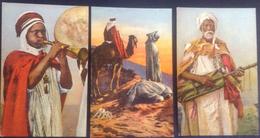 Cartes Postales (3) - Scènes Et Types Afrique Du Nord -105/109/123 - Éditions Sirecky - Oran - 1948