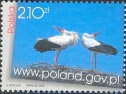 Pologne Poland Polska 3829 Cigogne