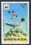 Black Headed Gull Mnh Stamp