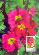 LIECHTENSTEIN 1996 MAXIMU FLOWERS  (FEB170263) - Liechtenstein