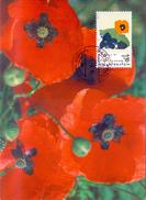 LIECHTENSTEIN 1996 MAXIMU FLOWERS  (FEB170264) - Liechtenstein