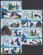 Z31 Comoros - MNH - Animals - Birds - Deluxe - 2011
