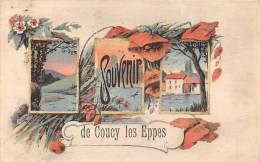 02 - AISNE - COUCY LES EPPES - Belle Carte Souvenir -