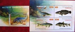 Tajikistan  2000  Fauna   Fishes  M/S + S/S  MNH