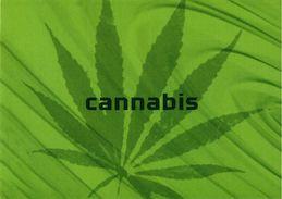 SANTE PREVENTION DROGUE USAGE LSD CANNABIS GHB COCAINE LOT 4 CPM EDIT POSTALFREE PORTUGAL - Gesundheit