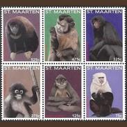 Sint Maarten 2015, Monkeys, 6val