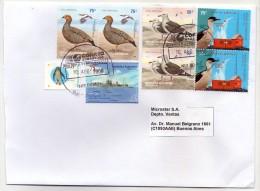 L'Argentine Un Enveloppe Circulé Avec Une Grande Quantité De Timbres D'oiseaux Antarctiques