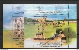 1996 MNH Indonesia Block 111-2, Postfris**