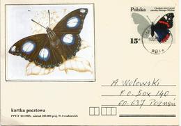 Protéger Les Enfants Contre La Polio (papillon), Entier Postal Adressé En Pologne - Butterflies
