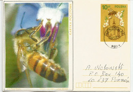 Apimondia, Entier Postal Adressé En Pologne