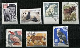 Russie Ob N° 2821 à 2827 ND - Animaux : éléphant, Panda, Ours, élan, Pélican, Tigre, Faucaon -