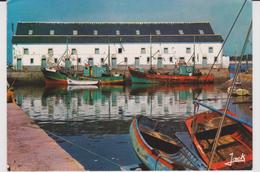 Loire  Atlantique :  LE  CROISIC  : La  Criée  Au  Port - Le Croisic
