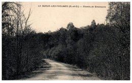 78 - La QUEUE Lez YVELINES -- Chemin De Grosrouvre - Autres Communes