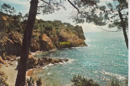 Reflets De France Cote D Azur Varoise  La Petite Calanque Entre Les Pins