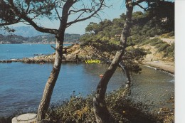 Calanque Mediterranéenne