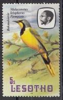 324 Lesotho 1981 Birds Uccelli  - Malaconotus Telophorus - Passeri  Nuovo