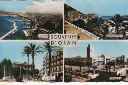 ALGERIE - ORAN -  CARTE SOUVENIR MULTI VUES  LA GARE C.F.A  PLACE KLEBER PREFECTURE PROMENADE LÉTANG