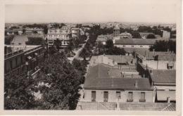 ALGERIE - SIDI BEL ABBES  - VUE PANORAMIQUE