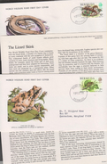 O) 1979 BERMUDA, WWF, WHISTLING FROG-ELEUTHERODACTYLUS- LIZAR SKINK-EUMECES, WORLD WILDLIFE FUN, WORLD WILDLIFE,FDC USED